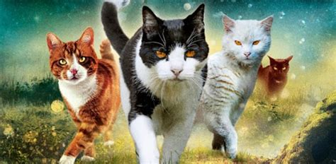 Warrior Cats Quiz: Who Are You? - ProProfs Quiz