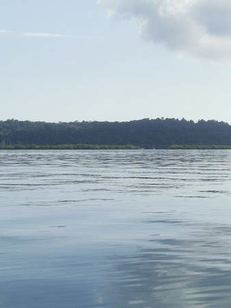 Dolphin Bay Preserve (Bocas Town) - 2021 All You Need to