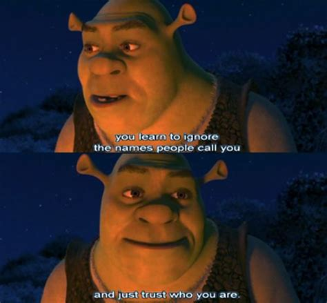 Pin by Chelsea Martell on animated movies   Shrek quotes