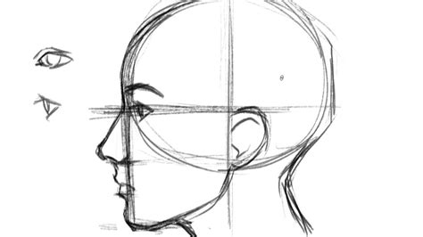 How to Draw a Face- Profile - YouTube