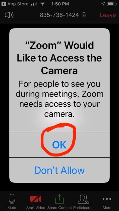 How To Use Zoom for the Technologically Challenged