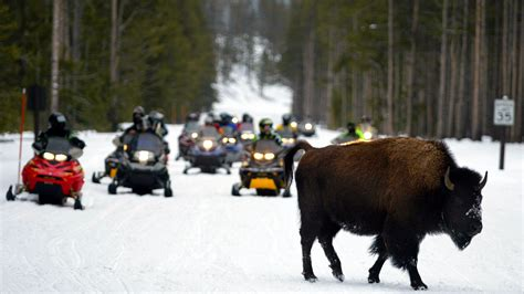 15 Years Of Wrangling Over Yellowstone Snowmobiles Ends : NPR