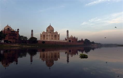 Taj Mahal Under Attack by Bugs and Their Green Slime - The