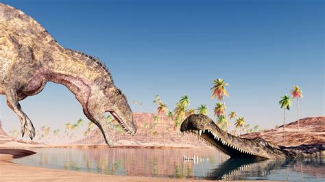 Found: An Ancient Fossil From A Crocodile The Size Of A Bus