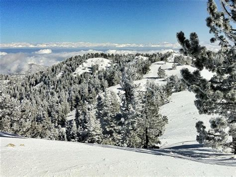 Mount Pinos - Skiing   RootsRated
