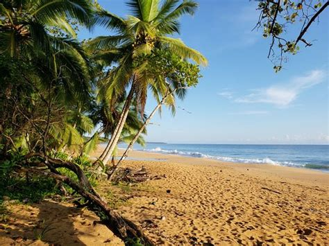 Playa Bluff (Bluff Beach) - All You Need to Know BEFORE